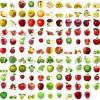 دانلود مجموعه تصاویر سیب با فرمت PNG-1